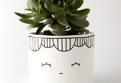 Ako presadiť a rozmnožovať izbové rastliny?