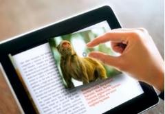 LCD čítačka kníh
