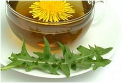 púpavový med a púpavový čaj