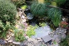 zazimovať záhradné jazierko