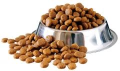 kvalitné krmivo pre psa