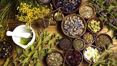 liečba bylinkami a korením