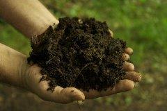 výroba domáceho hnojiva