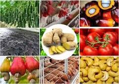 zníženie výdavkov za potraviny