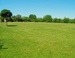 Ako spevniť trávnatú plochu