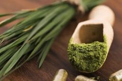Ako užívať zelený jačmeň?