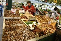 nákup húb na trhu