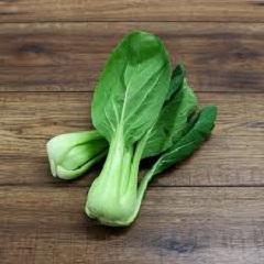 zelenina bok choy