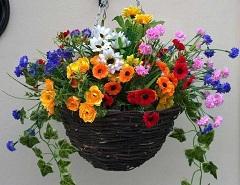rôzne druhy kvetov v košíku