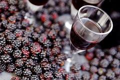 recept černicový likér
