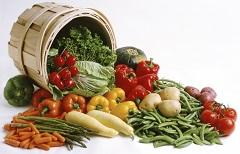 zásaditá strava