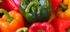 trojfarebná paprika