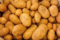 zemiaky na šalát
