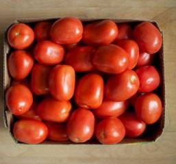 zrelé paradajky