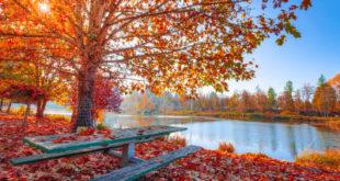 Ako sa cítiť fit teraz na jeseň, keď je slnka pomenej?