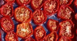 postup ako správne sušiť paradajky