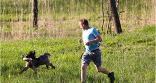 Ako správne behať so psom? Špeciálna výbava a vhodný štvornohý spoločník