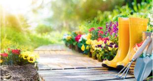 Nepostrádateľní pomocníci pre dom a záhradu – čo by vám nemalo doma chýbať